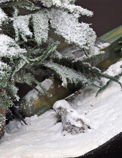 Snow Hunt 11