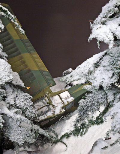 Snow Hunt 12